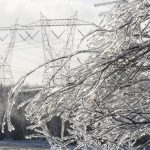 22 years ago the Ice Storm of '98 gripped Stittsville from January 5 – 18