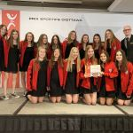 Ottawa Sports Award and tournament medals brought home for West Ottawa Ringette