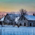 PHOTOS: Early winter morning (Part 3)