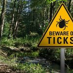 The season of ticks has arrived