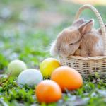 Easter celebrations and crafts to enjoy during unusual times