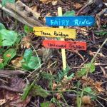 Fairyland turns up in local park to the delight of a dog walker