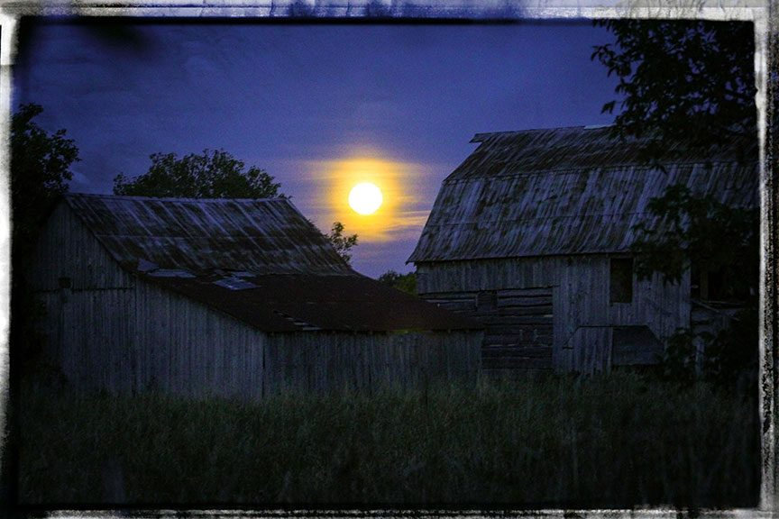 The harvest moon rising south of Stittsville on Friday night. Photo by Barry Gray.