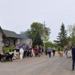 Off to a great start – HolliBell Foundation join with Sunset Farms for first doggie walk-a-thon