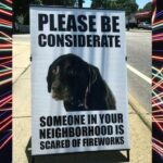 Humane Society warns that Canada Day can pose a serious risk to pets