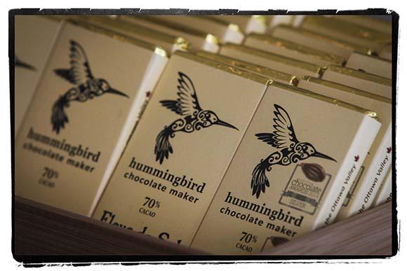 Hummingbird-10 copy