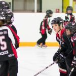 Bring your kids to the free 'come try ringette' open house and watch a game