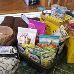 Stittsville students 'stun' cat rescue with mass donation of supplies, funds