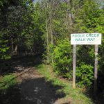 Following Poole Creek, Part 1