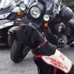 Motorcyle Ride for Guide Dogs – 224 kms of scenic Eastern Ontario