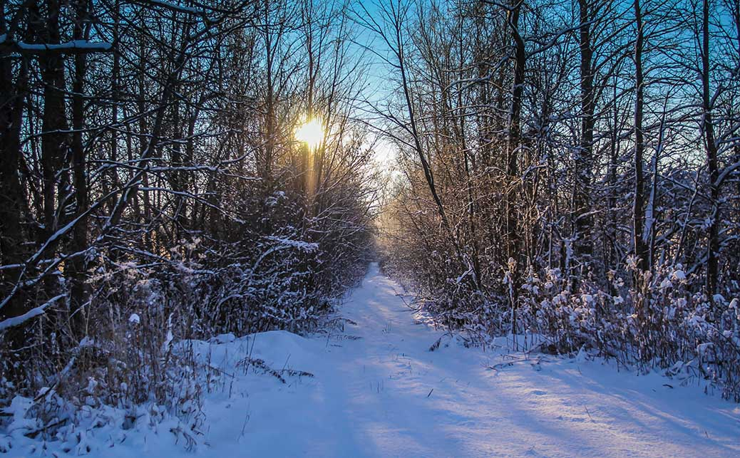 STITTSVILLE, ON. Dec 6, 2016. Early moring trails. Barry Gray (Stittsvillecentral).