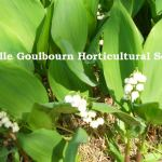 Stittsville-Goulbourn Horticultural Society – final meeting of the season