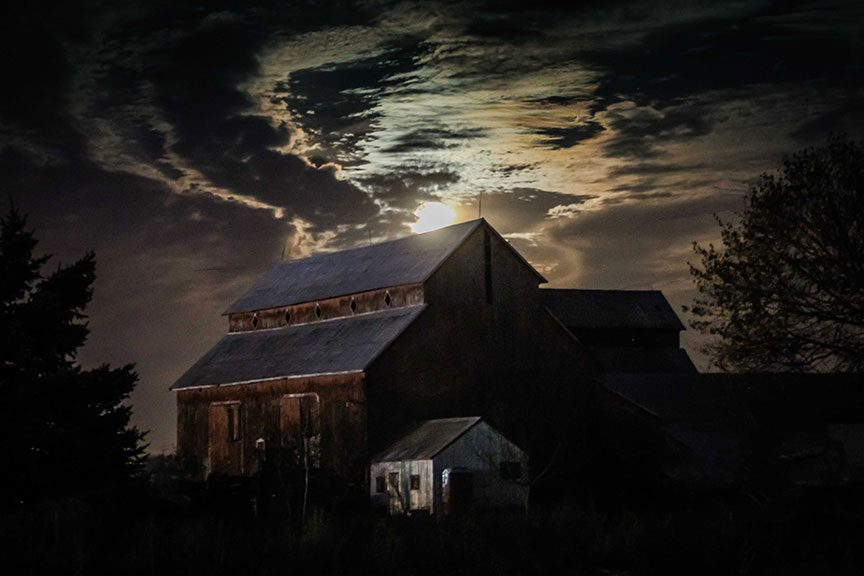 November 14, 2016. Supermoon over the Bradley-Craig farm on Hazeldean Road. Photo by Barry Gray.