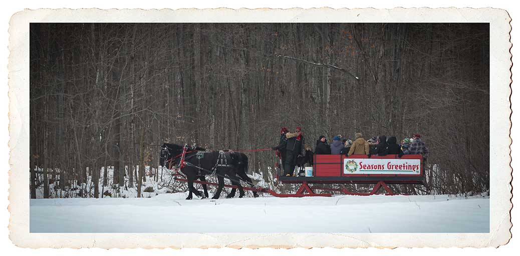 NORTH GOWER, ON. Dec 11, 2016. Sleigh ride to the back of the farm. Barry Gray (StittsvilleCentral)