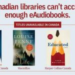 Ever wonder why there aren't more e-books at your Stittsville Public Library?