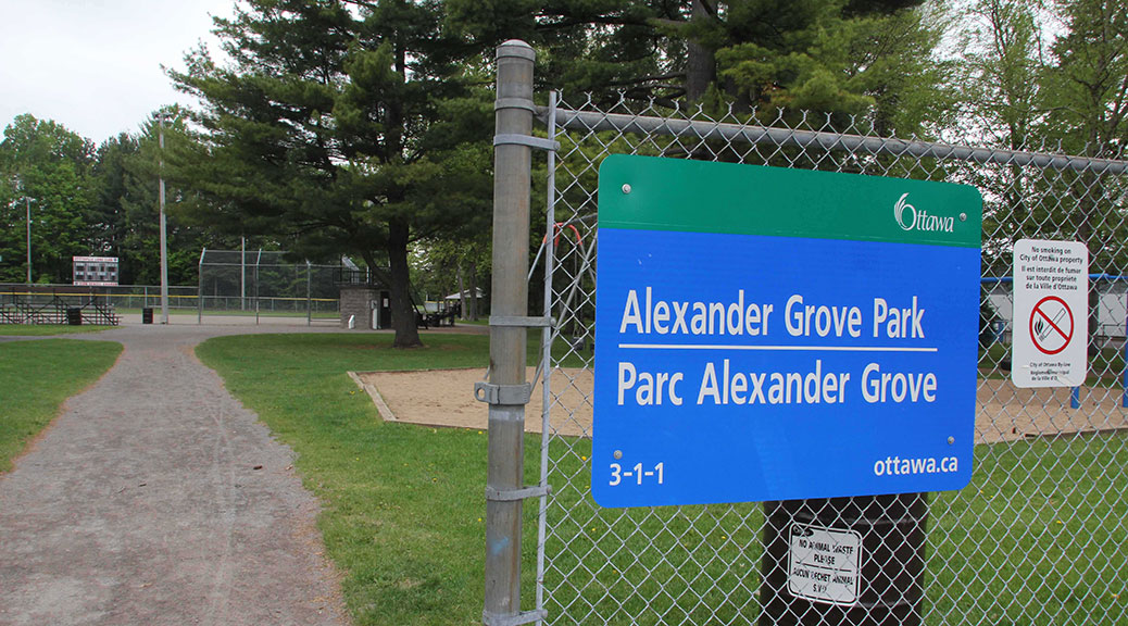 Alexander Grove Park / Photo by Barry Gray