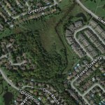 ASHES TO ASHES: Trees to be removed in Amberwood