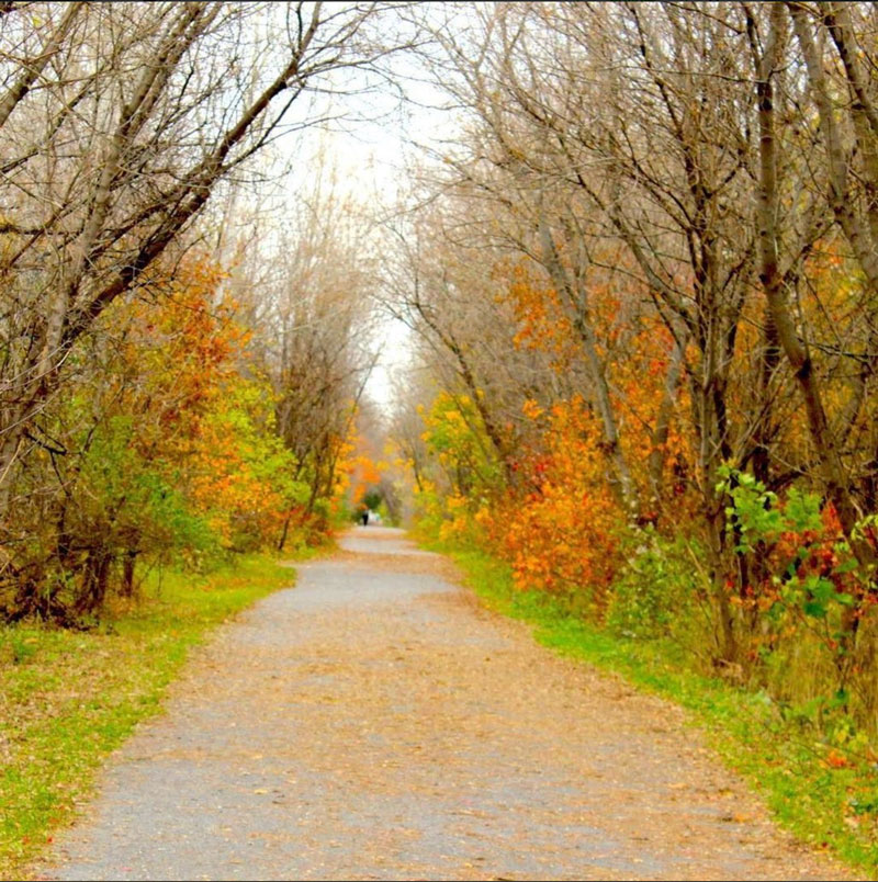 Fall in Stittsville, along the Trans Canada Trail. Photo by Steve Benson.