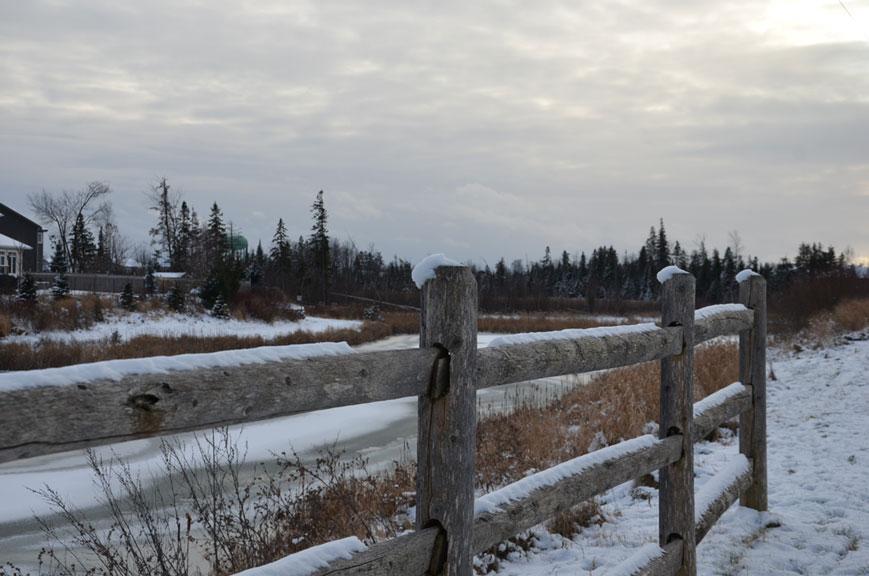 Jackson Trails, December 2017. Photo by Connor Boudreau.