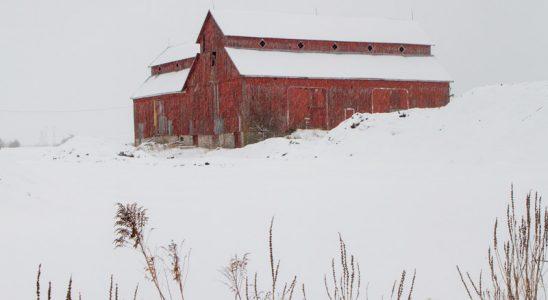 The Bradley-Craig barn, under freshly-fallen snow. Photo by Rob Hambly.