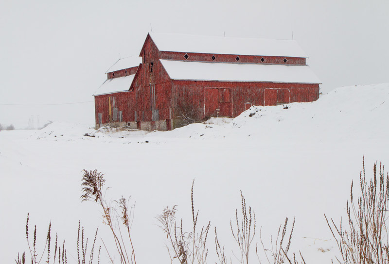The Bradley-Craig barn, under freshly-fallen snow. Photo by Rob Hambly.