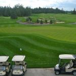 Stittsville and District Lions Club hosting charity golf tournament