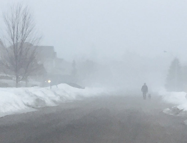 Fog on Thursday morning along a residential street in Stittsville. Photo by Stephany Castilla