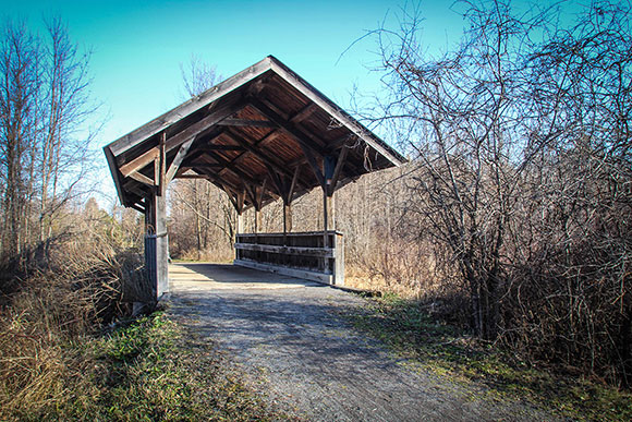 The covered bridge. Photo by Barry Gray.