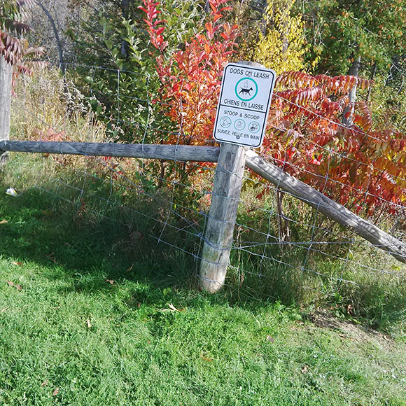 """Signage at Coyote Run park in West Ridge. The city's web site lists it as """"off-leash"""", but signage indicates otherwise. Photo by Vicki Gibson."""