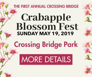 crossing-bridge-crabapple-blossom-fest