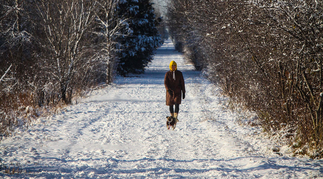 Early morning dog walker on the Trans Canada Trail. Photo by Barry Gray.