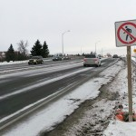 UPDATE: Small step in the right direction for Eagleson overpass sidewalk
