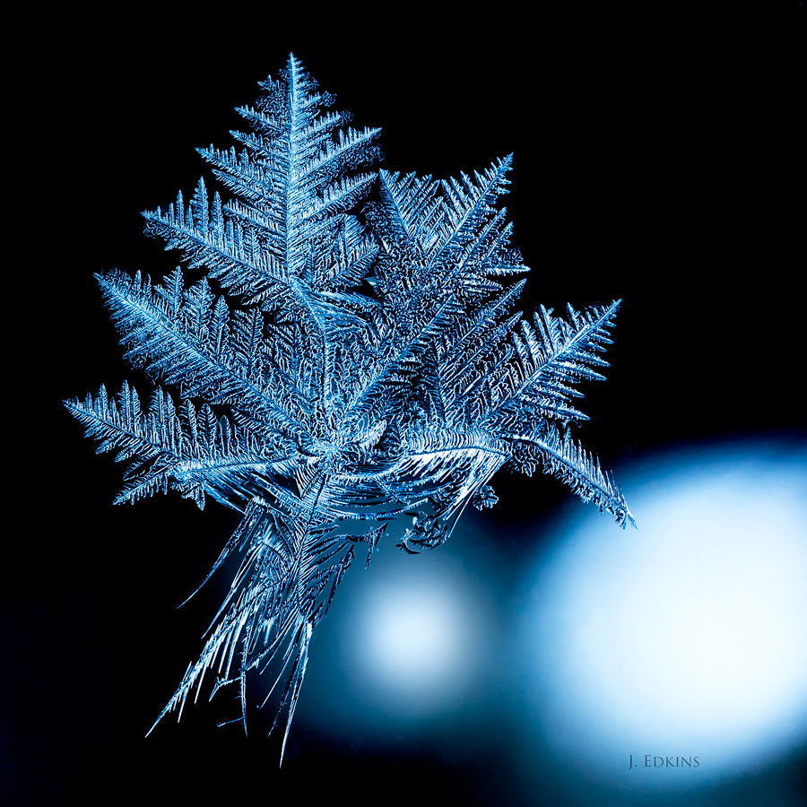 "Maple Leaf Crystal, by John Edkins. ""I saw it on my window and thought it looked like a lot like a maple leaf."""