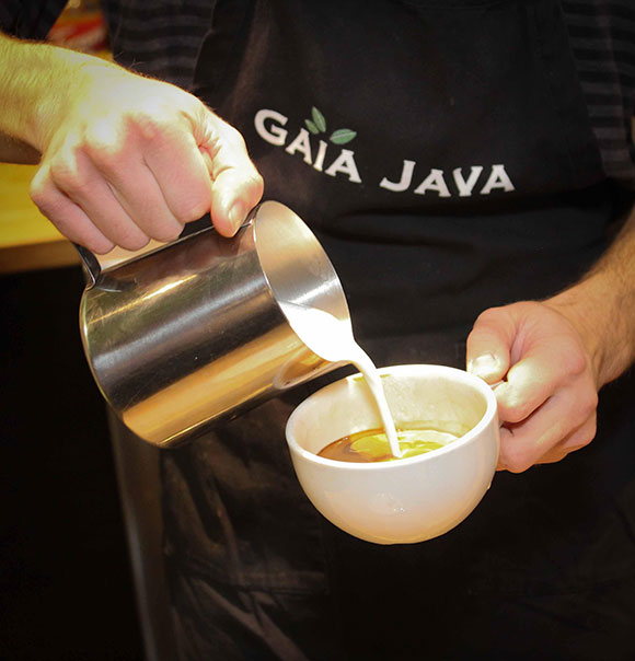 Gaia Java. Photo by Barry Gray