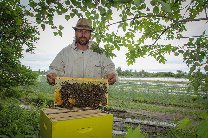 Matthew Gee, Co-Founder of Gees Bees Honey Company, holding up part of a bee hive. Photo by Barry Gray.