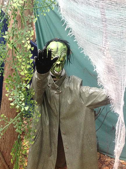 Halloween on Goulbourn Street