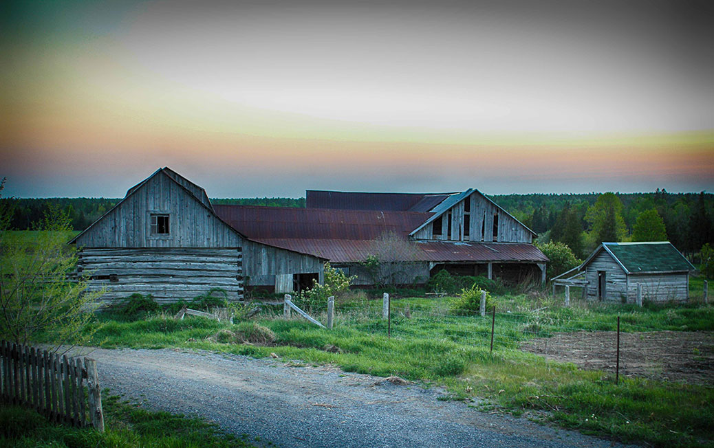 An abandoned farm, just west of Stittsville off a side road. Photo by Barry Gray.