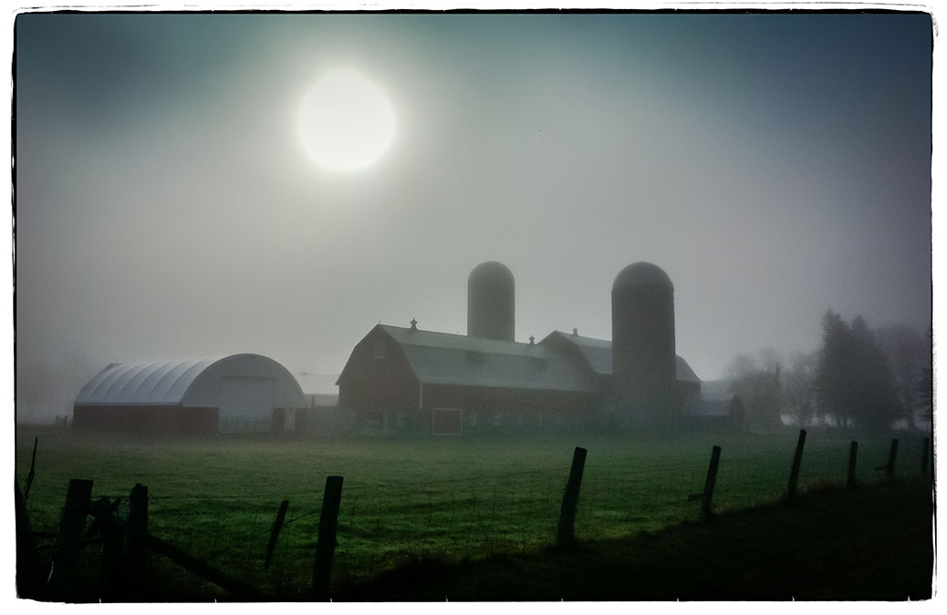 Stittsville fog on Tuesday morning, on the way to Richmond. Photo by Barry Gray.