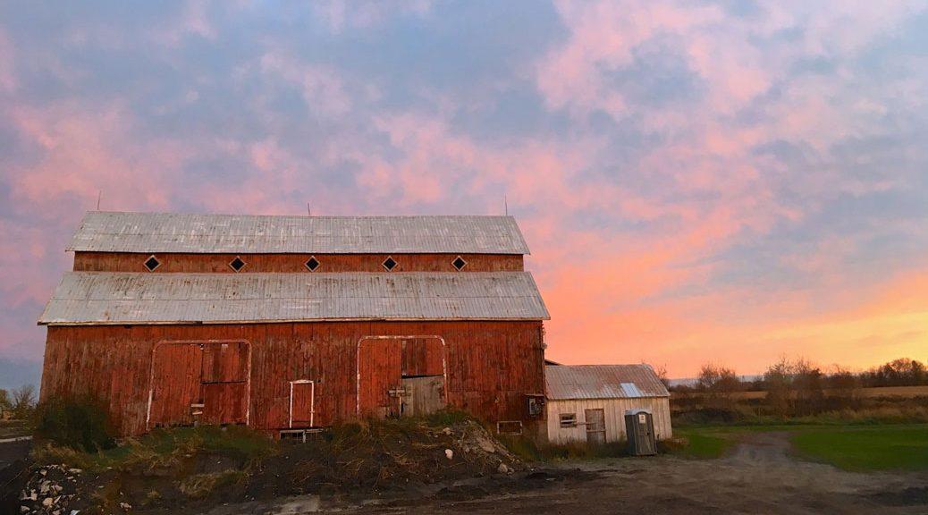 Sunset over the Bradley Craig Farm, October 26. Photo by Mandy Hambly.