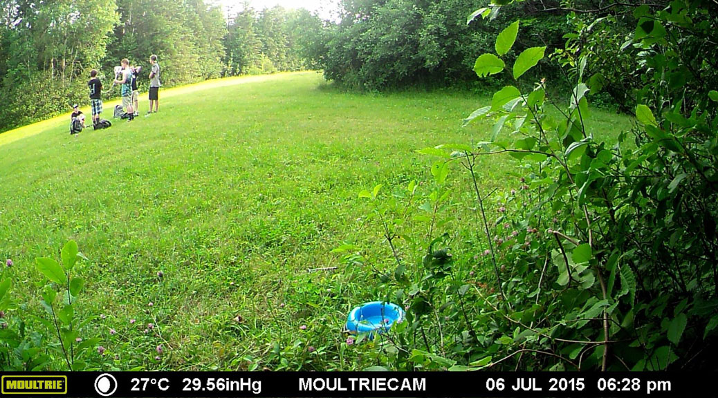 Image from the Finding Holly Trail Cam