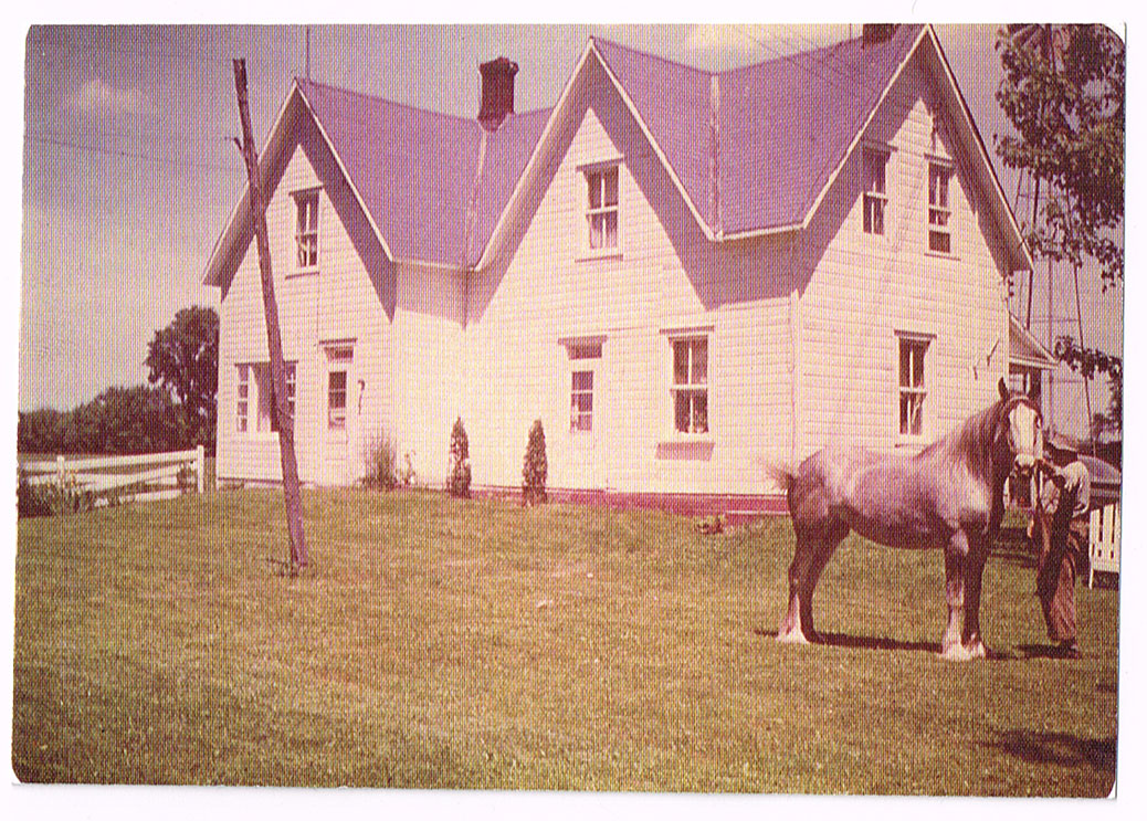 The Walt's house replaced an earlier seven-gable white farmhouse that was built by the James family.  That's probably Stirling James with one of his horses out front.