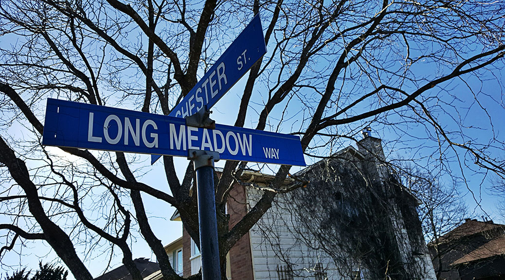 Street Sign: Long Meadow Way at Manchester Street