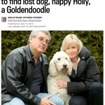 CITIZEN: Stittsville family wages campaign to find lost dog, happy Holly, a Goldendoodle