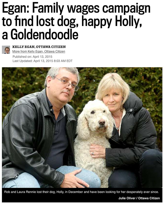 Egan: Family wages campaign to find lost dog, happy Holly, a Goldendoodle