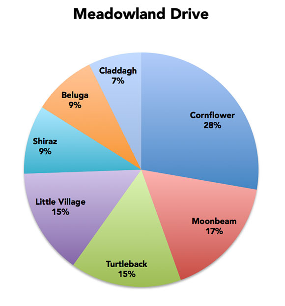 Cornflower, a blue flowering plant, has a considerable lead over the other choices on Meadowland Drive.