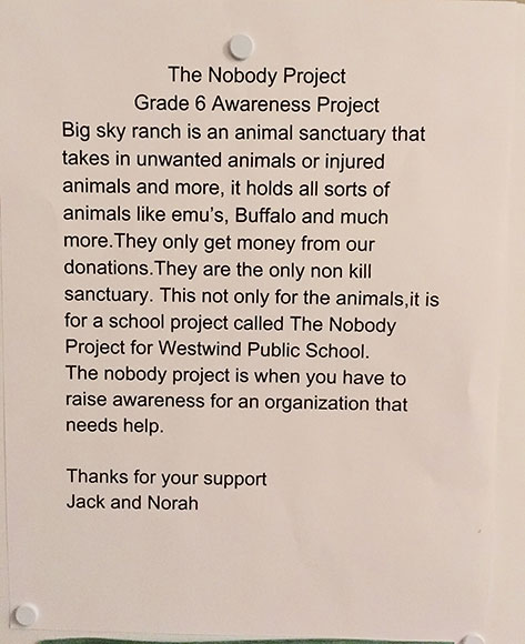 Norah and Jack's Nobody Project