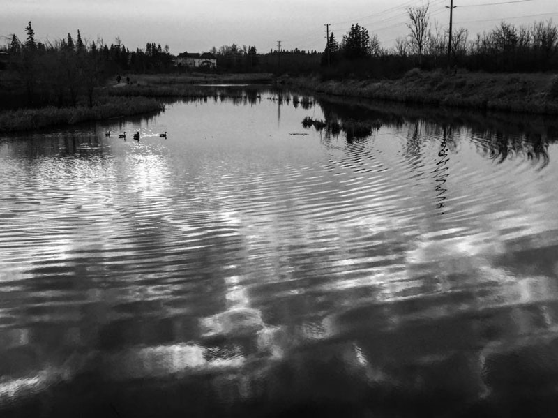 """Ripple"", by Richard Monette. This is the stormwater management pond at the end of Stittsville Main Street in Jackson Trails. If you're on Instagram, check out more of Richard's photos at @richmonty_blackwhite."