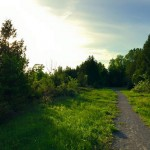 PHOTO: Beautiful night on the trails