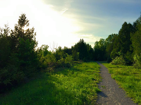 Beautiful night on the trails. Photo by Christopher Skinner.