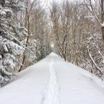 PHOTO: Winter on the trail